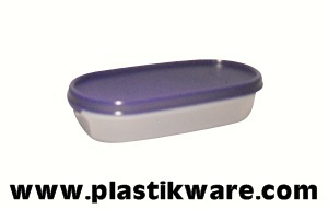 TUPPERWARE EIDGENOSSE 300 ML